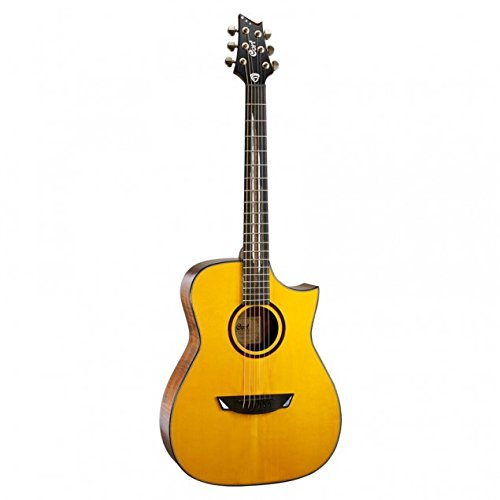 Cort LUXE - Frank Gambale Signature Model w/case ()