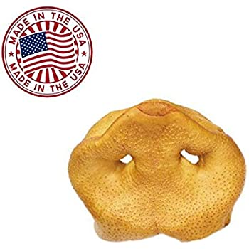 Amazon.com : Pig Snouts for Dogs (10 Pack), Bulk Dog