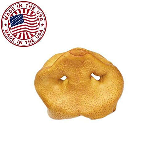 Pig Snouts for Dogs (10 Pack), Bulk Dog Dental Treats & Natural Pork Dog Chews, Made in USA, American Made