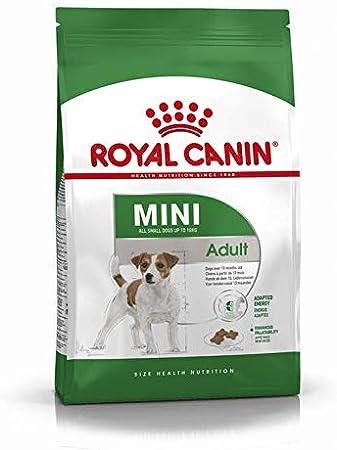 RoyalCanin Mini Adult 4kg. Comida para Perros de Razas Pequeñas y Toys | Pienso Gastrointestinal con Gran Sabor Que Controla el Peso, Elimina el Sarro Dental y Mantiene el Pelo y la Piel Saludables