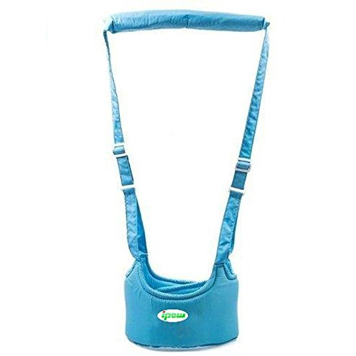 Handheld Protective Harnesses Learning Assistant