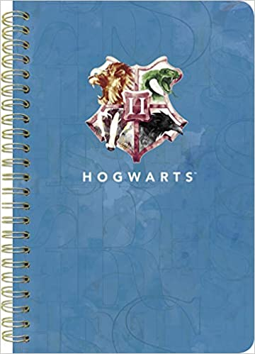 Harry Potter 2020 Weekly/Monthly Planner: Amazon.es: Libros ...