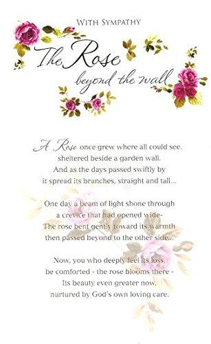 Beyond The Rose