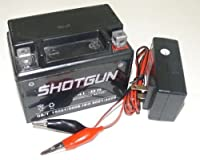Shotgun YTX4L-BS Lawn Mower Battery/Charger for Snapper All Walk Behind Mowers