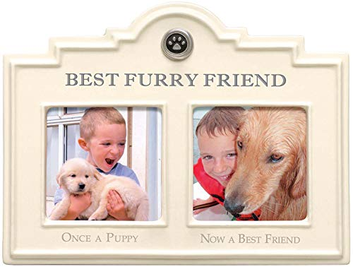 (Stephanie Imports Ceramic Best Furry Friend Dog Double Photo Frame)