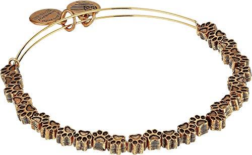 Alex and Ani Women's Passw Print Beaded Bangle Bracelet, Rafaelian Gold