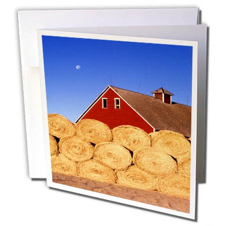 3dRose TDSwhite – Farm and Food - Farm Barn Hay Bales Stacked - 12 Greeting Cards with Envelopes (gc_285107_2)