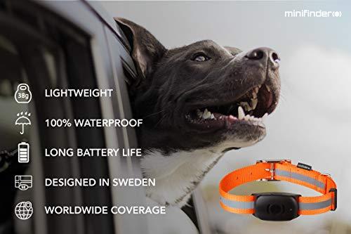 minifinder® Atto Dog GPS Tracker 3