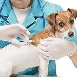 Backagin 20/10/5/1 Packs 2.12mm 1.4mm Dogs ID