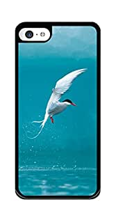 NBcase Flying Wing Bird hard PC iphone 5 cases for girls