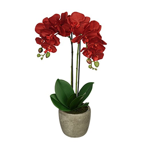 House of Silk Flowers Artificial Double-Stem Orchid in Grey Stone-Look Vase (Red) (Silk Red Orchids)