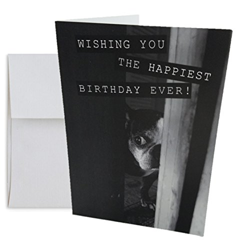 Cute Expressive Boston Terrier Blank Birthday Greeting Card with White Envelope, 5x7 - Terrier Birthday Card