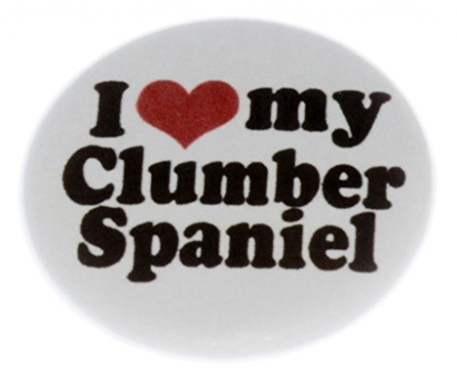 I Love my Clumber Spaniel MAGNET (heart) - Dog Puppy