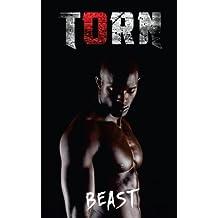 Torn (Volume 1)