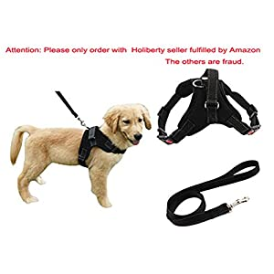 Heavy Duty Adjustable Pet Puppy Dog Safety Harness with Leash Lead Set Reflective No-Pull Breathable Padded Dog Leash Collar Chest Harness Vest with Handle for Small Medium Large Dogs Training Walking 9