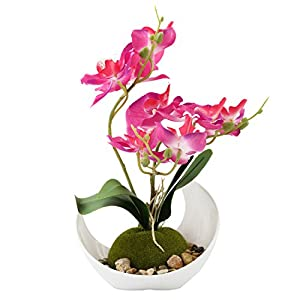 Modern Artificial Flower Decoration, Synthetic Orchids w/Sleek Curved Planter, Pink