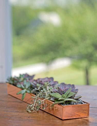Gardener's Supply Company Rectangular Copper Plant Tray, 24 x 5