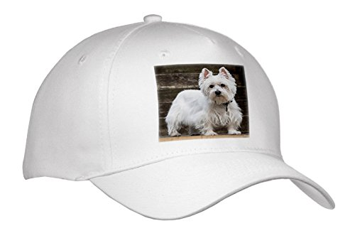 Roni Chastain Photography - Westie - Caps - Adult Baseball Cap (cap_261694_1) (Westie Hat)