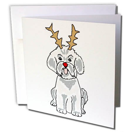 3dRose All Smiles Art Christmas - Funny Cute Bichon Frise with Reindeer Antlers Christmas Art - 1 Greeting Card with envelope - Bichon Frise Cards Christmas