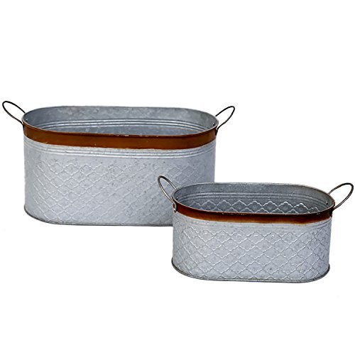 Metal Planter Flower Pot Galvanized Container Succulent Garden Bucket for Indoor or Outdoor Balcony Patio with Drain Hole and Handle by CEDAR HOME, 2 (Flowers Container Gardens)