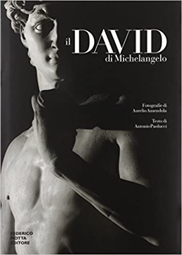 ii david di michelangelo italian edition