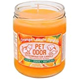 Amazon.com : Angry Orange Pet Odor Eliminator for Dog and