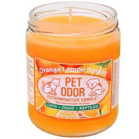 Pet Odor Exterminator Candle Orange Lemon Splash Jar (13 oz) (Scented Orange Candles)