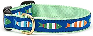 product image for Up Country Funky Fish Dog Collar