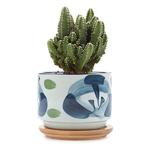 t4u-3-inch-ceramic-japanese-style-serial-no7-succulent-plant-pot-cactus-plant-pot-flower-pot-contain