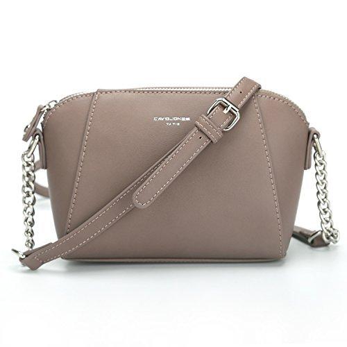 Cute Cross Body Bags - DAVID - JONES INTERNATIONAL Small Saddle Cute Pink Crossbody Bags Chain Leather Purse Handbags for Women