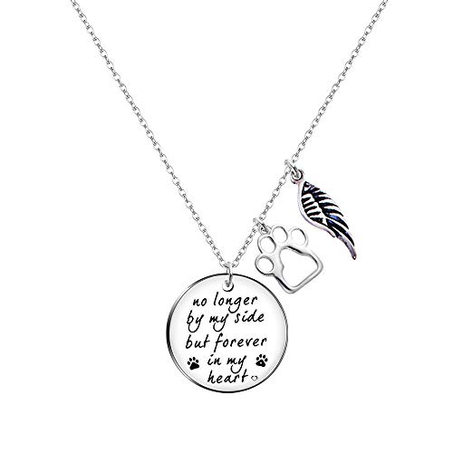 Paris Selection Pet Memorial Necklace Sympathy Gift- No Longer by My Side but Forever in My Heart