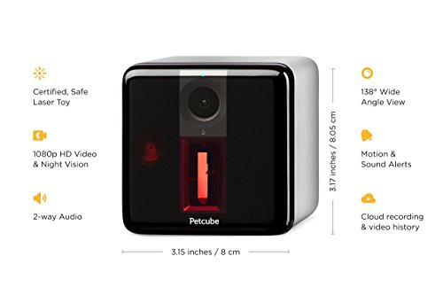 Petcube Play Pet Camera with Interactive Laser Toy. Monitor Your Pet Remotely with HD 1080p Video, Two-Way Audio, Night Vision, Sound and Motion Alerts. Compatible with Alexa (Renewed) by Petcube (Image #3)