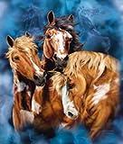 Nine Horses Blanket