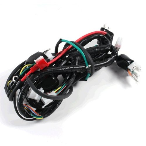 Wiring Loom for BT125T-2 (WRLM057):