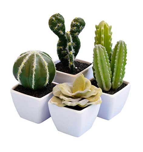 Set of 4 Mini Assorted Cactus Green Artificial Succulent Plants in White Plastic Pots, Small Potted Fake Faux Cacti Foam Succulents Suculentas for Home Decoration as Desk Plant Decor