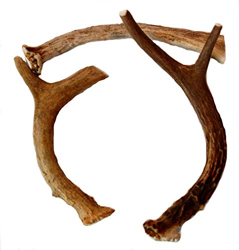 3 Pack Medium Deer Antler Dog Chews - 6 Inches to 10 Inches - For Small to Medium Size Dogs - Big Dog Antler Chews Brand