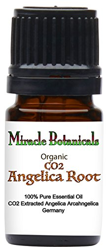 - Miracle Botanicals Organic Angelica Root Essential Oil - CO2 Extracted - 100% Pure Angelica Archangelica - Therapeutic Grade - 5ml