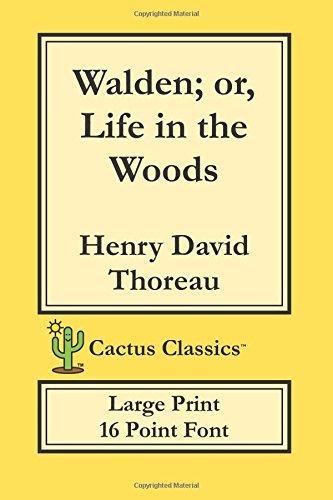 walden woods - 8