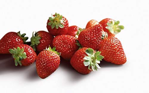 Organic Jewel Strawberry 315 Seeds UPC 600188194746 + 1 Free Plant Marker - Firm, Arrangement Variety