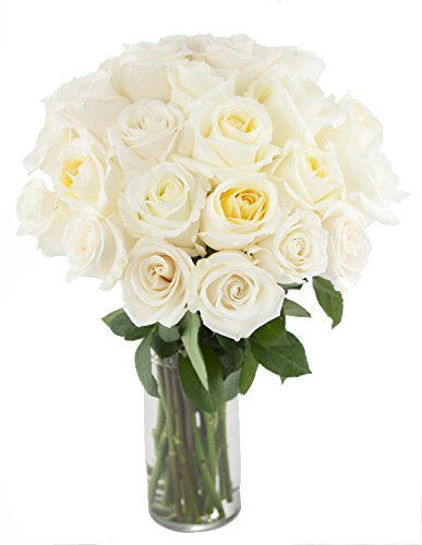 Bouquet of Long Stemmed White Roses (Two Dozen) - The KaBloom Collection Flowers With Vase