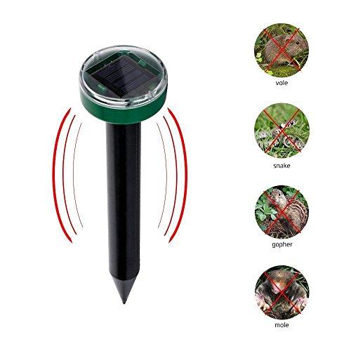 1 Pack Solar Mole Repeller Snake Gopher Repellent Solar Spike for for Outdoor Garden Yard (mole repeller) by GIZGA