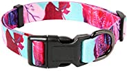 Timos Floral Print Puppy Dog Collar for Small Medium Large Dogs Collars with Safety Locking Buckle for Girls F