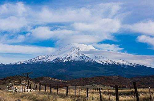 - Picturesque View of Majestic Mount Shasta Giclee Fine Art Print …