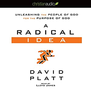 A Radical Idea Audiobook