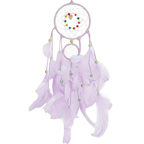 2 Meters Lighting Dream Catcher Hanging DIY 20 LED lamp Feather Crafts Wind Chimes,Purple (Hanging Lafayette Outdoor)
