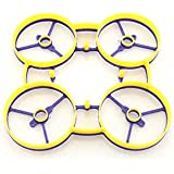RaGG-e Whoop Frame- Purple/Yellow Color