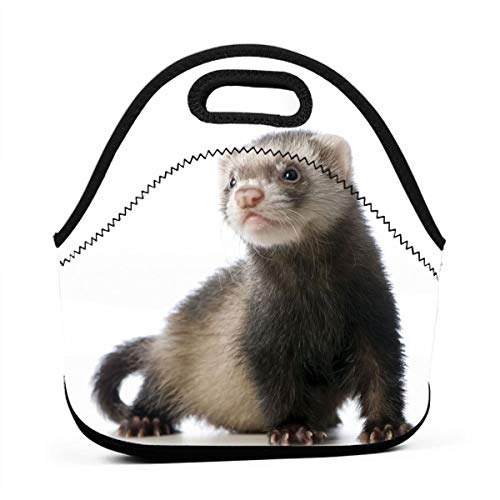 WONDERMAKE Cute Ferret Hand Lunch Bags Insulated Thermal Cooler Outdoor School Office Travel Picnic Lunchbox Tote Handbag Teens Kids Adults