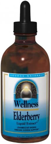 Source Naturals Wellness Elderberry Liquid Extract, 4 Ounce Pack of 2