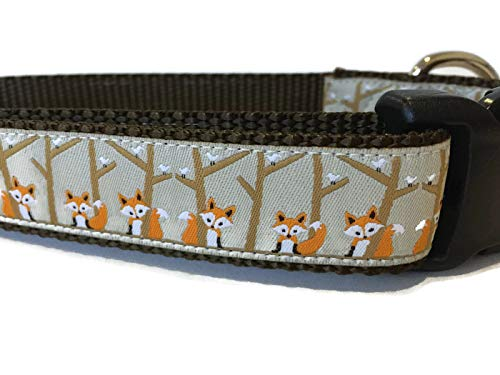 (Autumn Dog Collar, Caninedesign, Fall, 1 inch Wide, Adjustable, Nylon, Medium and Large (Birch Fox, Medium 13-19