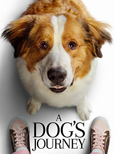 A Dog#039s Journey